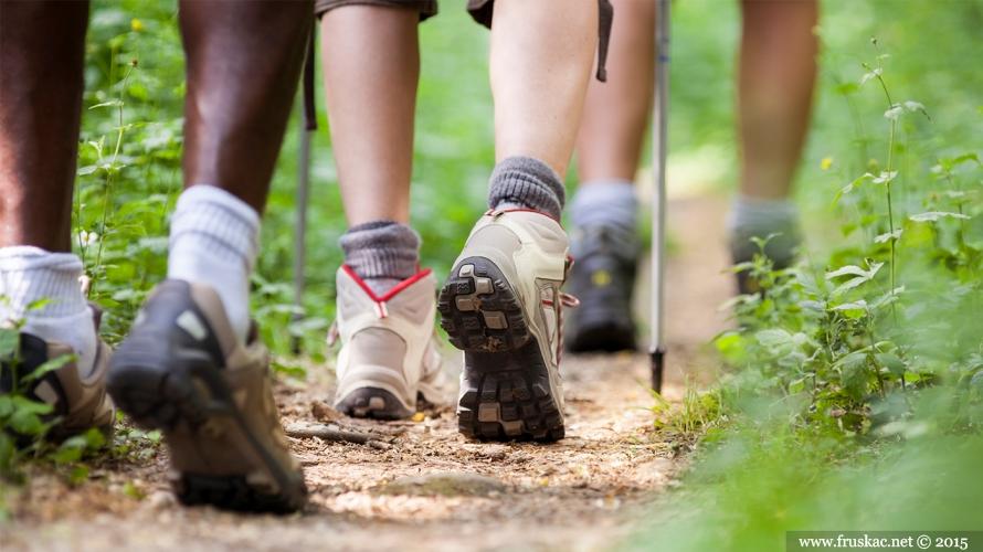 News - Pripremamo se za 42. Fruškogorski maraton - plan za mart 2019.