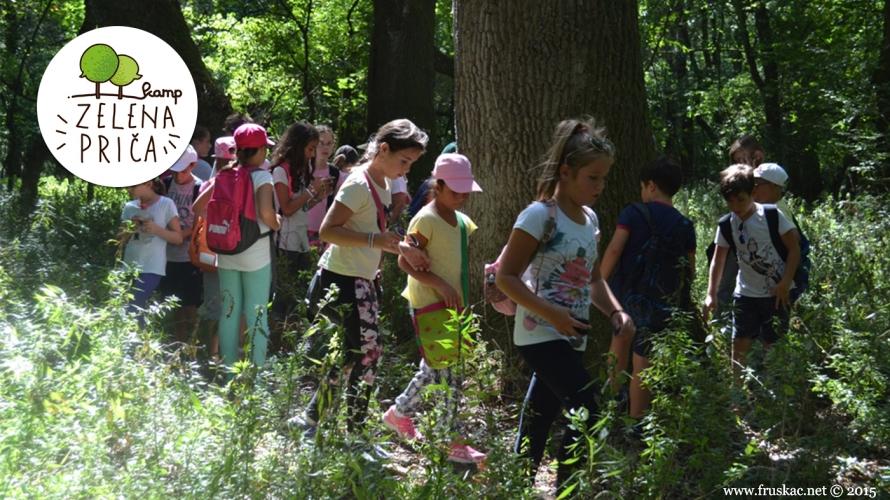 News - Adventure Day - proleće u šumi