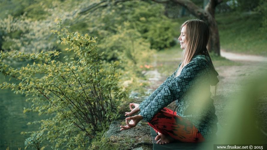 """Nature - Doživi Shinri-ioku i """"okupaj"""" se u imunološkom sistemu šume"""