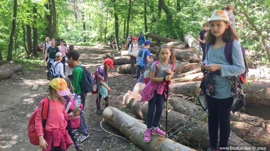 News - Kako smo se proveli na Adventure day - proleće u šumi
