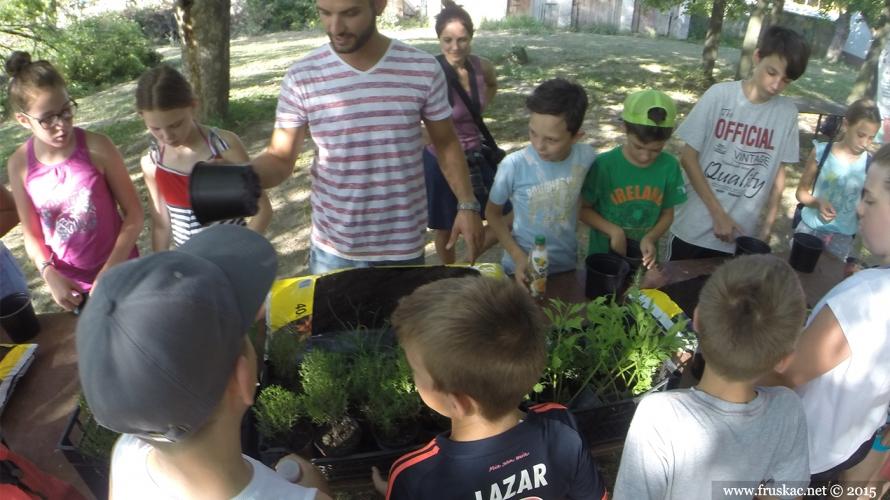 """News - Kamp """"Zelena Priča"""" - Adventure Day Fruška gora"""