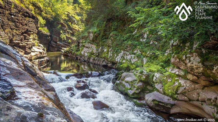News - Odbranimo reke Stare planine - konferencija za novinare