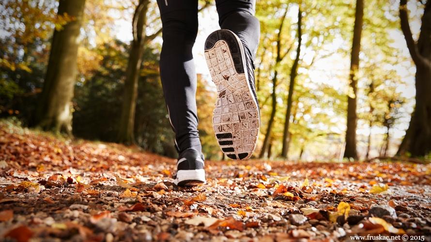 News - 8. Otvoreno prvenstvo Fruške gore u planinskom trčanju