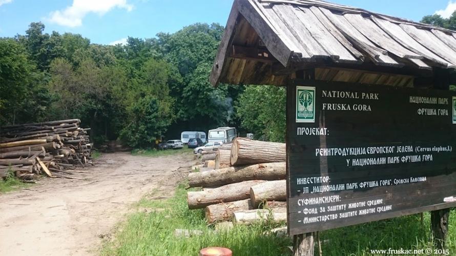 Nature - O seči šume u Nacionalnom parku Fruška gora