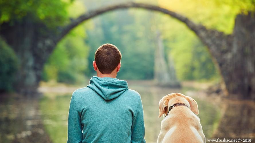 News - Svetski dan zaštite životinja: volimo ih i čuvajmo svaki dan