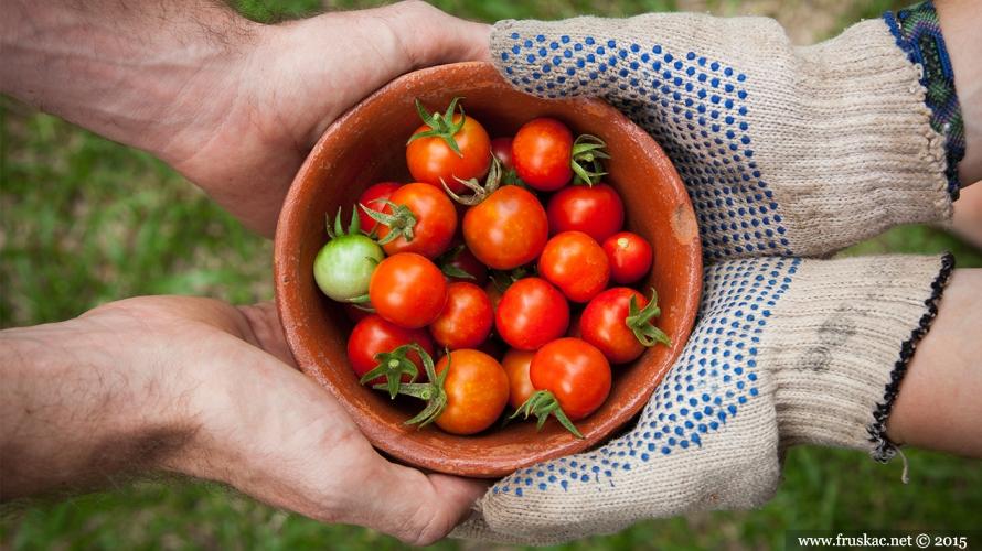 News - VII NLB Organic konkurs