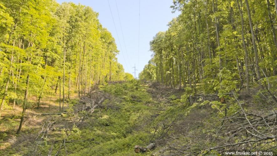 Picnic Areas - Izletište Osovlje