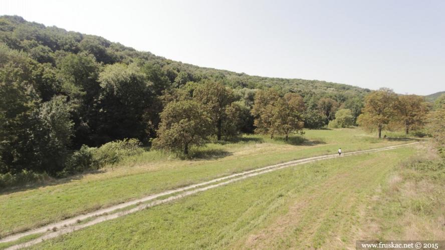 Misc - Dolina kestenova