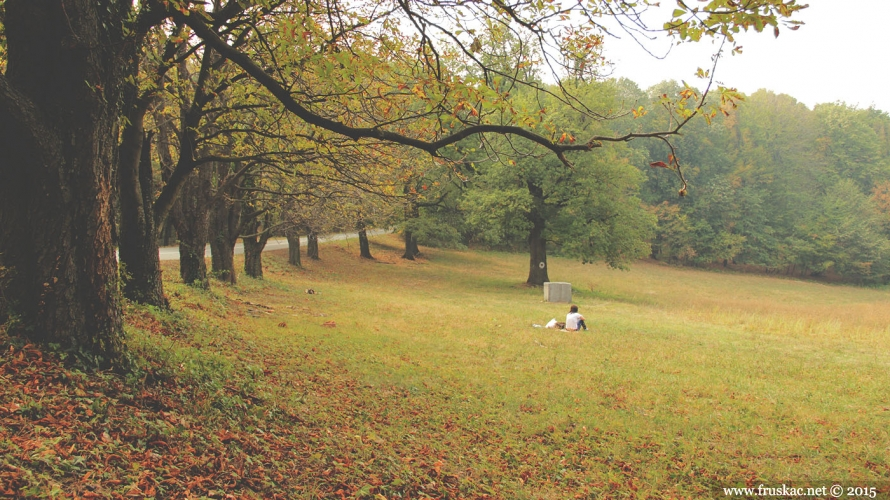 Picnic Areas - Izletište Letenka
