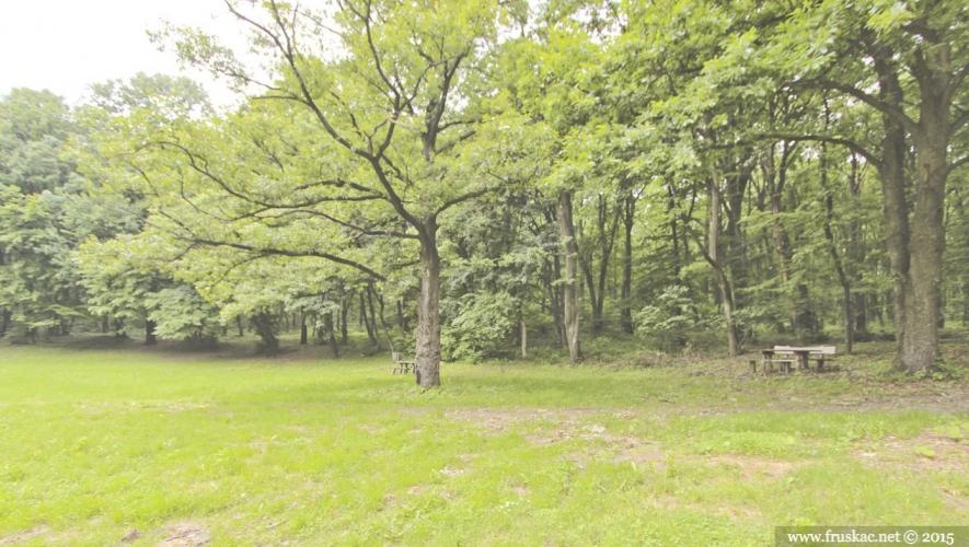 Picnic Areas - Bobelik Meadow Picnic Area