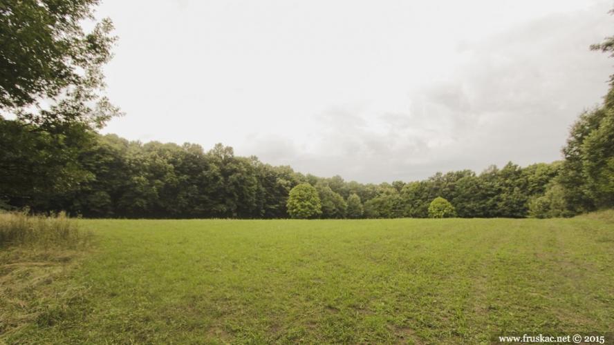 Meadows - Livada Ravne