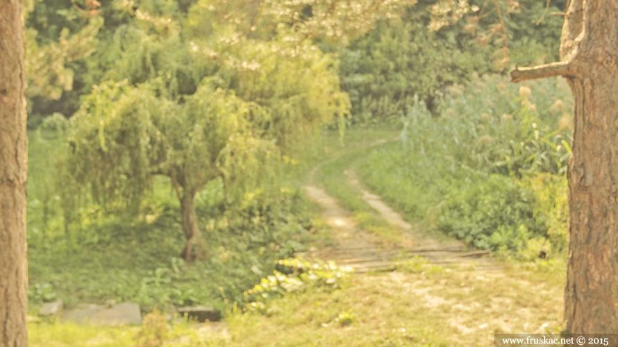Springs - Izvor Jelica