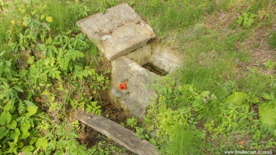 Springs - Zjalina Spring