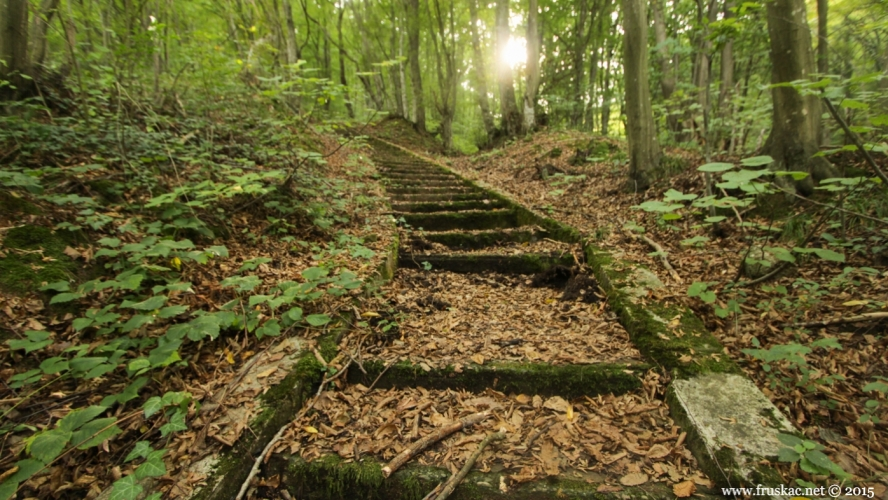 Vrdnik stairs