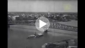 Film noir i nostalgija za gradskim zelenilom