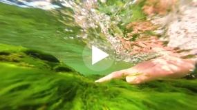 Uprirodise – Voda (3. epizoda)